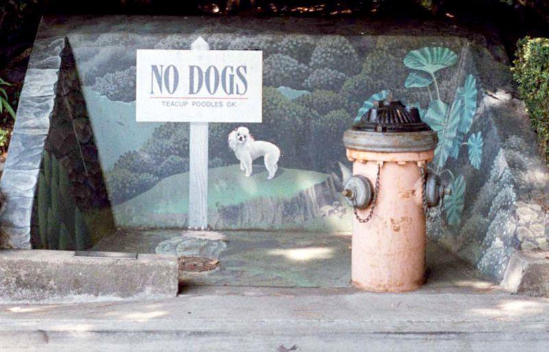 Nodog2