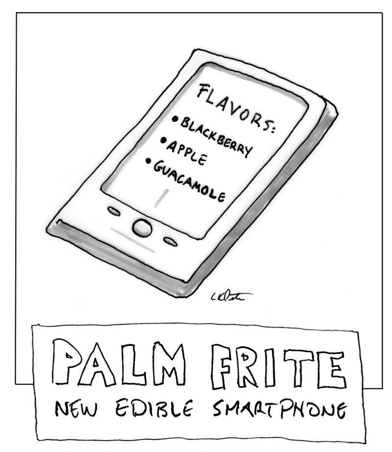 Palmfrite2