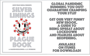 Silver-linings-plague-book