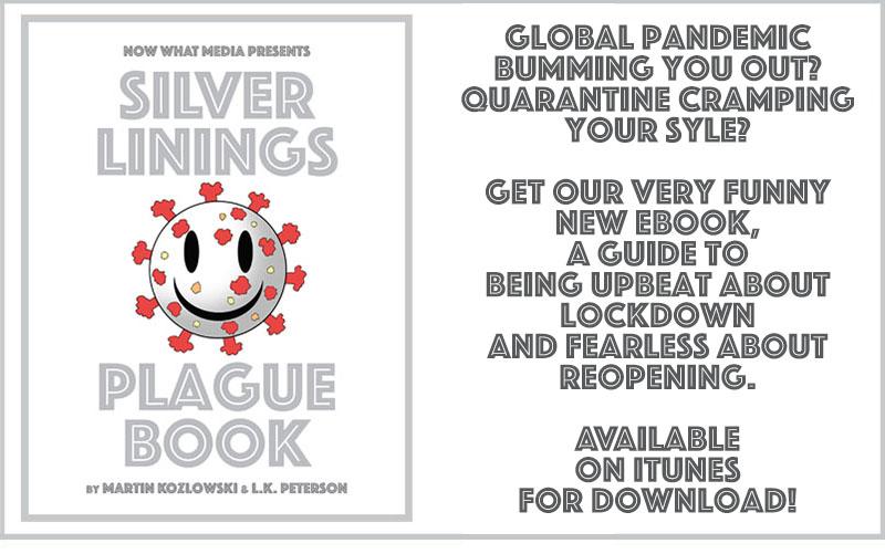 Silver-linings-plague-book